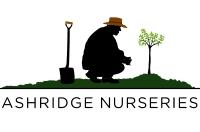 Ashridge Nurseries